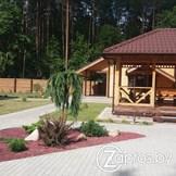 ГЛХУ «Гомельский лесхоз»10989